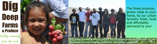 Dig Deep Farms & Produce